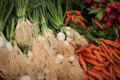 Oignons verts et carottes photos libres de droits