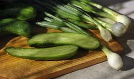 Oignons verts et concombres sur un conseil en bois Images stock
