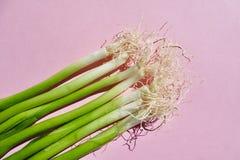 Oignons verts frais de ressort sur Pale Pink Background photographie stock