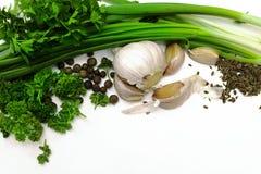Oignons verts, persil, ail et épices sur le blanc photos stock