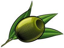 Oiive piqué par vert. Illustration de Vecteur