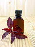 Oil with amaranth on board Stock Photos