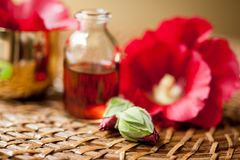 Oil for aromatherapy Royalty Free Stock Photography