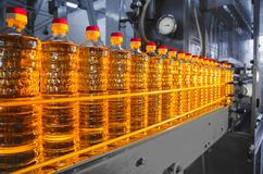 Oil in bottles. Industrial production of sunflower oil. Conveyor. Line for bottling and packing. Sunflower oil plant Stock Photos