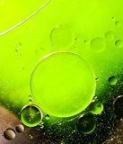 Oil bubbles abtract Stock Photography