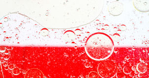 Oil bubbles abtract. Oil drops on a water surface. Abtract background Stock Photography