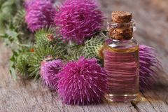 Oil of burdock close-up on a table Royalty Free Stock Images