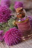 Oil of burdock macro in a glass bottle vertical Stock Images