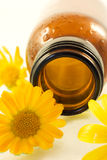 Oil from calendula flower Stock Photo
