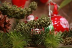 Oil cannabis in a bottle and hemp on a christmas background royalty free stock photography