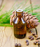 Oil with cedar cone and nuts on the board Royalty Free Stock Image