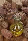 Oil of cedar nuts Stock Image