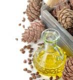 Oil of cedar nuts Royalty Free Stock Photos