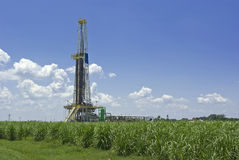 Oil Drilling Rig and Sugar Cane Royalty Free Stock Photo