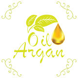 Oil drop, Argan oil cosmetic falling from leef with decoration elements  on white background Royalty Free Stock Photo