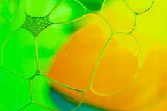 Oil drops floating in water abstract multi color background. Stock Image