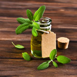 Oil with dry leaves of sage stock images