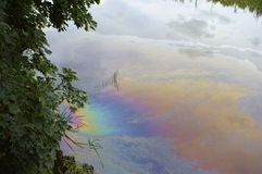 Oil film on surface of river. Pollution oil forming a rainbow film on the surface of a river Stock Image