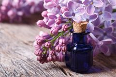 Oil from the fragrant flowers of lilac horizontal Royalty Free Stock Images
