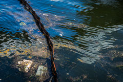Oil and garbage pollution in the water. Stock Photography