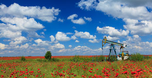 Oil and gas pump operating. Oil and gas pump machinery profiled on blue sky, in a poppy field Royalty Free Stock Photos