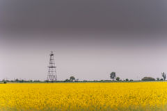 Oil and gas well rig, outlined rural canola field. Oil and gas well rig , outlined on rural canola field, on an overcast day Stock Photography