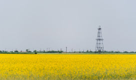 Oil and gas well rig, outlined rural canola field. Oil and gas well rig , outlined on rural canola field, on an overcast day Stock Images