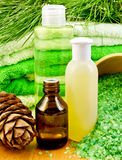 Oil and Gel with cedar cones Royalty Free Stock Image
