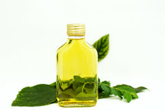 Oil and green leaf Royalty Free Stock Photos