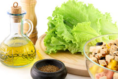 Oil, green salad, cut vegetables and spices. One the white background Stock Image