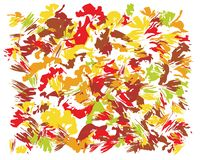 Oil Abstract Brush Painting. Oil hand drawn brush autumn colors painting. Watercolor abstract brush painted vector illustration. Brush stokes painting, splashing royalty free illustration