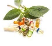 Oil  herbs capsul on isolate. Alternative Stock Photo