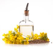 Oil. Isolated rape oil with blossoms on white background Stock Image