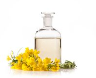 Oil. Isolated rape oil with blossoms on white background Stock Photo