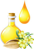 Oil of jojoba is in a bottle Stock Photos
