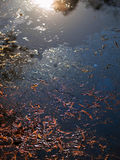 OIL IN LAKE. CREATED BY POOR OPERATIONAL PRACTICES AND OTHER FACTORS Stock Photo
