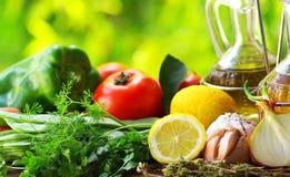 Oil Olive and condiments. Oil Olive and condiments of mediterranic cuisine royalty free stock image