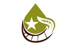Oil Olive Nature Leaf Solution Stock Images