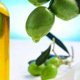 oil olive olivgrön Arkivfoton