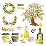 Oil olive tree food bottle label vector illustration. Royalty Free Stock Image