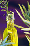 Oil of the Olive tree,rosemary Royalty Free Stock Image