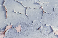 Oil Paint peeling off the wall Royalty Free Stock Photo