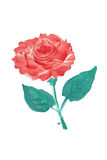 Oil painted flower vector illustration