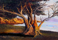 Oil Painting. Very Nice small scale Oil painting on Canvas stock photography