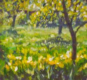 Oil painting with acrylic on canvas. Sunny spring summer day in garden rural landscape nature. Glade of green grass, flowering tre. Es. Impressionism Royalty Free Stock Photography