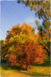 Oil painting of autumn tree Stock Image