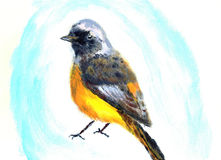 Oil painting bird Royalty Free Stock Photography