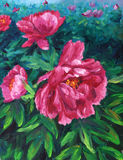 Oil Painting - Blooming Peony Royalty Free Stock Photo