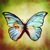 Oil painting of blue butterfly vector illustration