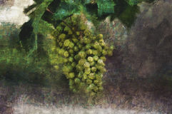 Oil painting. Brush of green grapes. On gray background Royalty Free Stock Photography